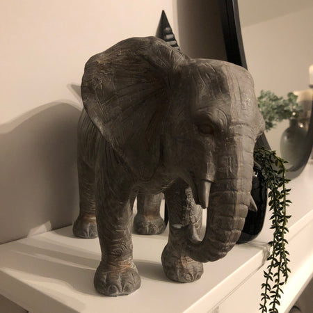 Large grey elephant