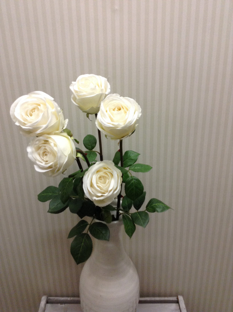 White rose single stem