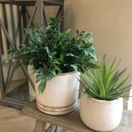 Store seconds blush planter