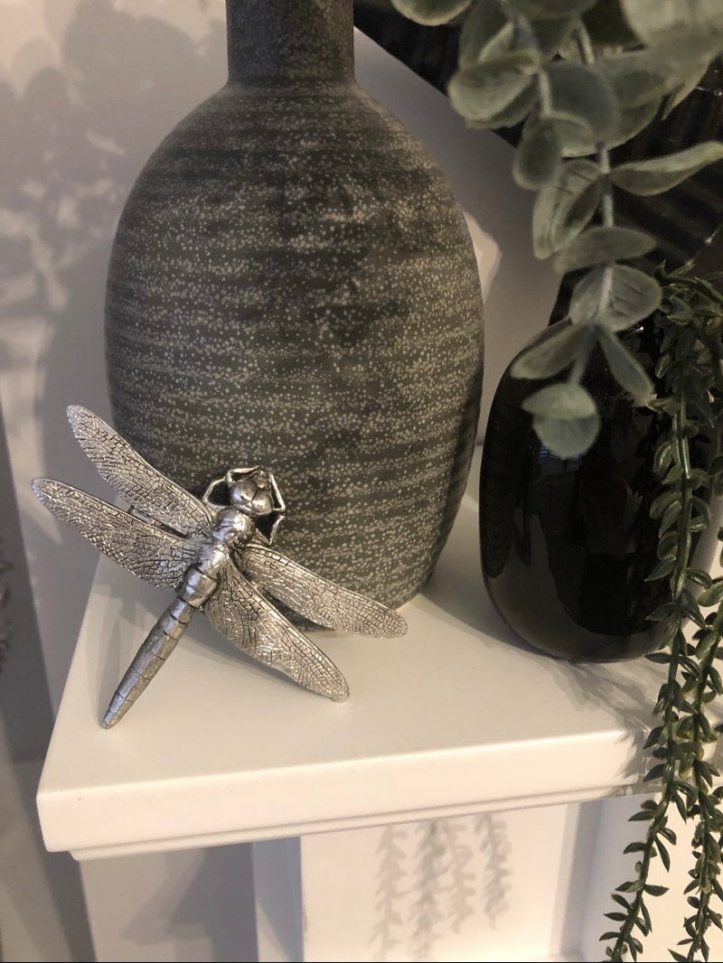 Store seconds silver dragonfly clip
