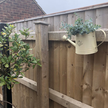 Cream watering can wall planter