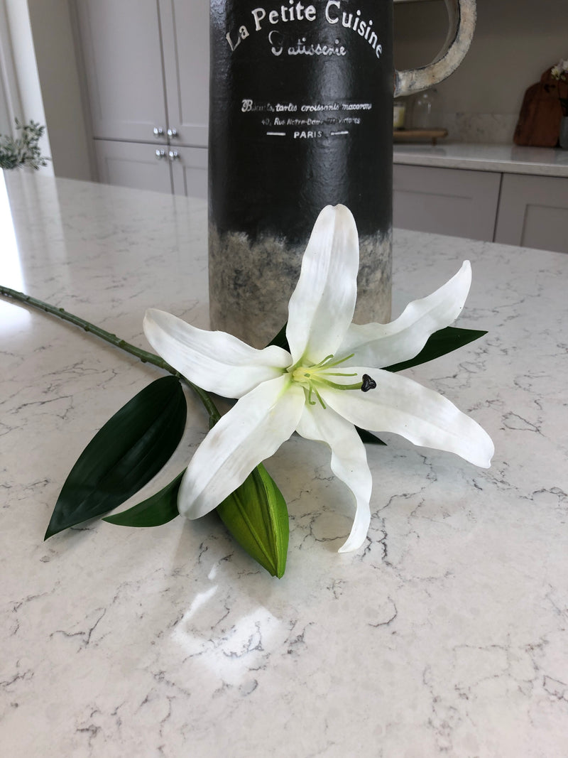 Casablanca White lily tall stem