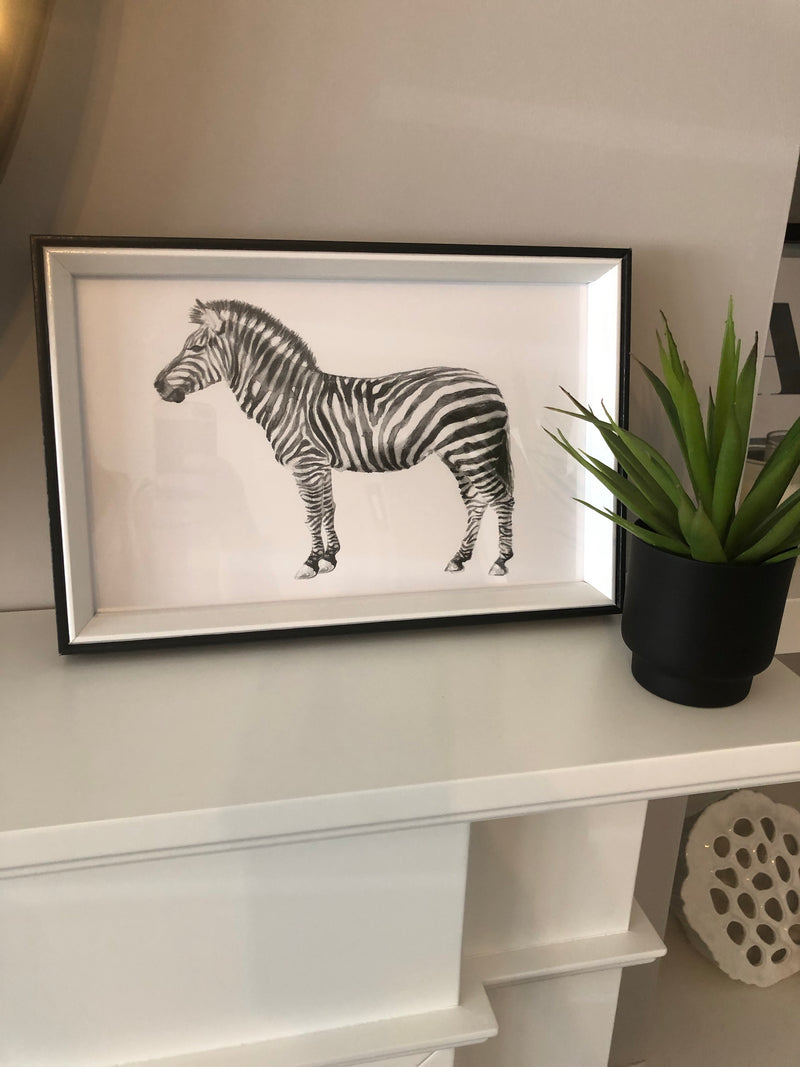 Zebra print in black box frame