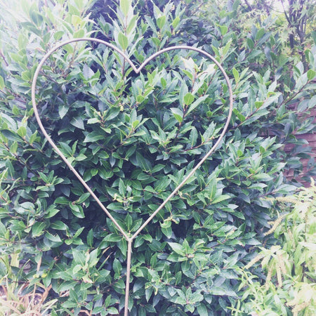 Medium Metal Garden Heart Stake