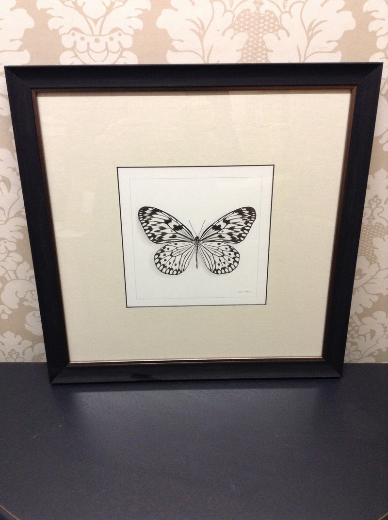 Butterfly Picture Design