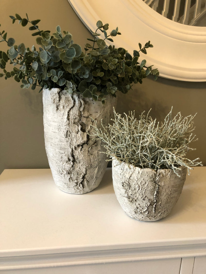 Silver Birch tree trunk Plant Pot