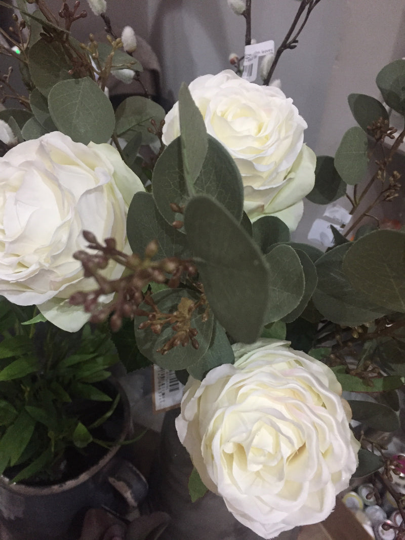 White Vienna rose single stem
