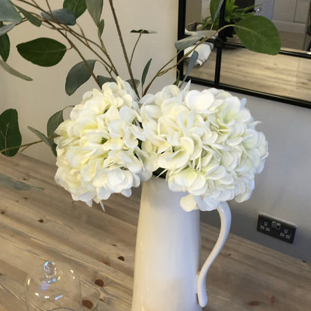 White 'real feel' hydrangea
