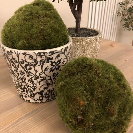 Realistic green Moss Ball