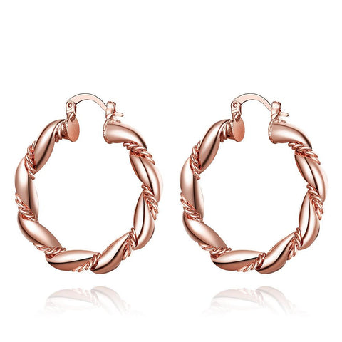 Rose Gold Plated Polished Small Hinged Hoop Earrings - rubiquejewelry.com