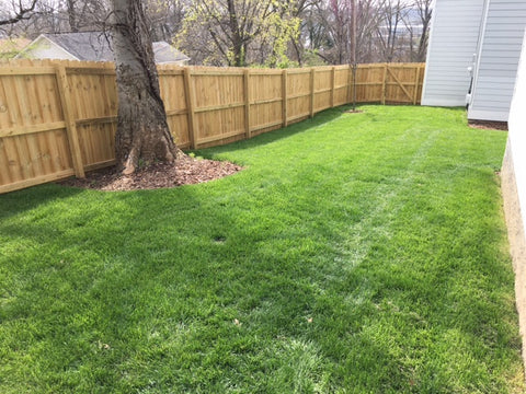 Nashville lawns and landscaping