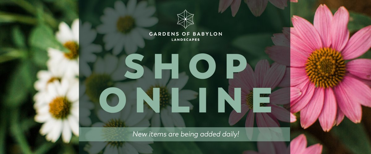 Online Ordering now available with Curbside Pick-Up or Porch Delivery