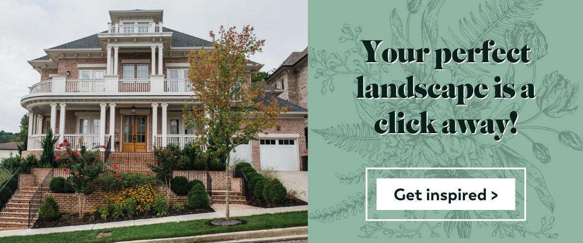 Start Your Landscape Consultation Here!