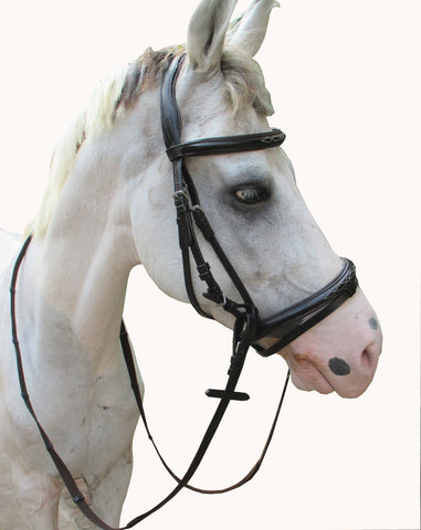 Leather Bridle With Raises Noseband