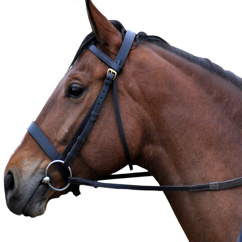 Hunter Leather Bridle