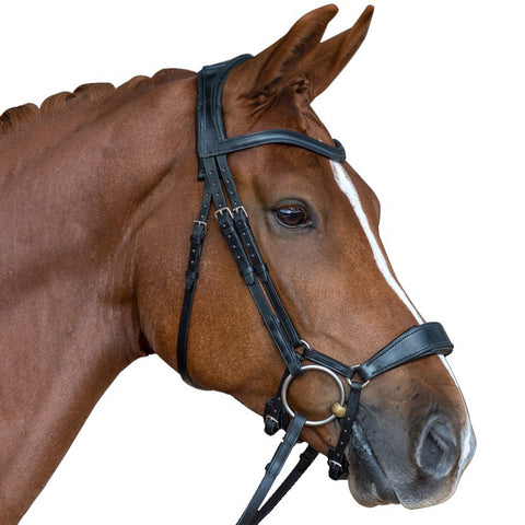 Black Leather Premium Bridle