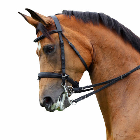 Black Padded Bridle