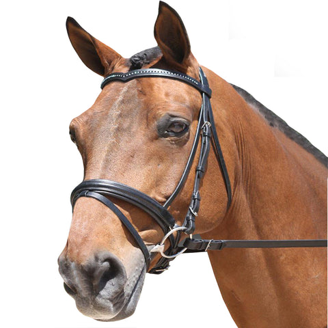 Padded Dressage Bridle