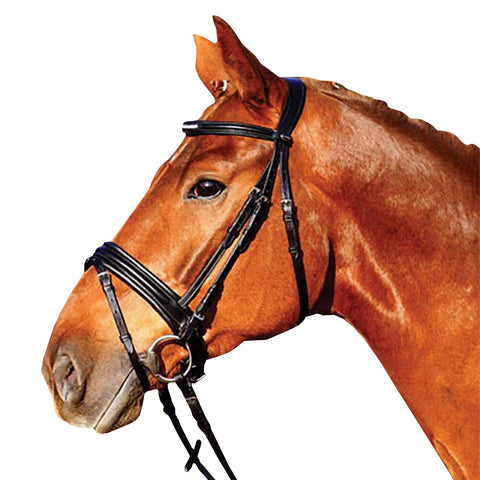 Black Padded Dressage Leather Bridle