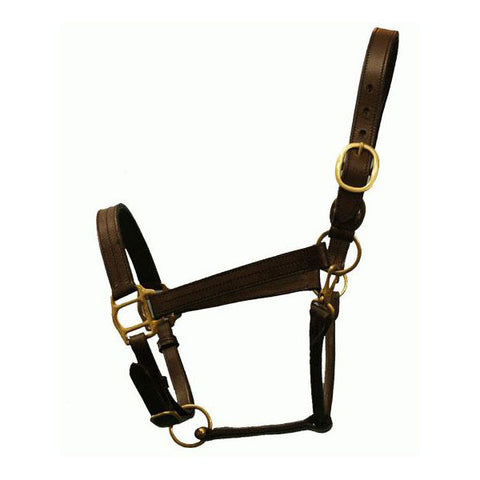 Designer Brown Leather Halter