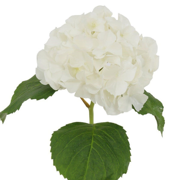 "23.5"" Natural Touch Hydrangea Stem - White-Blooms & Branches-Home Smith"