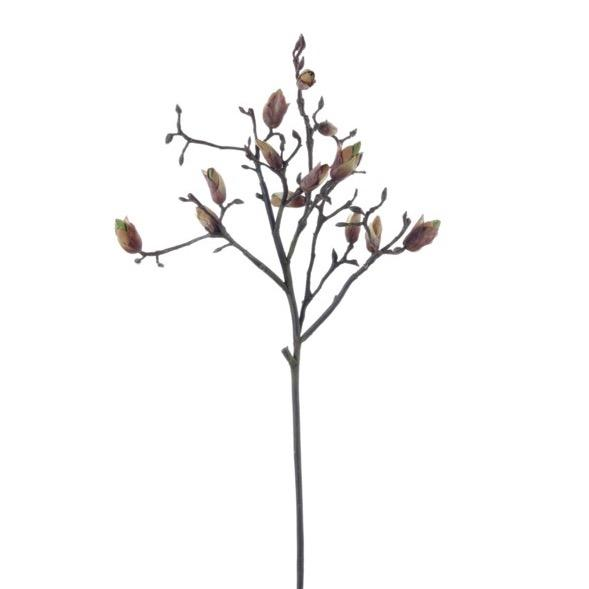 "36"" Japanese Magnolia Bud Branches - Home Smith"