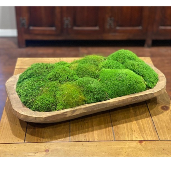 Medium Carved Bowl with Preserved Moss-Forever Green Art-Home Smith