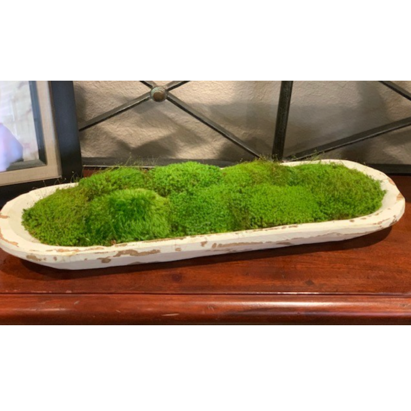 Small Bread Bowl with Preserved Moss - Home Smith