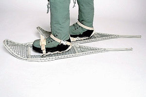 Shoeshoes with Harness, Pair