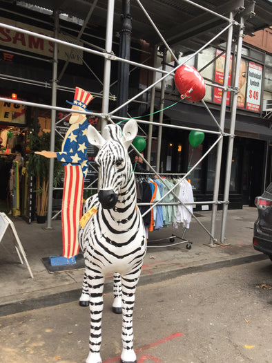 Wait...is that a Zebra in an Army Navy Store?????