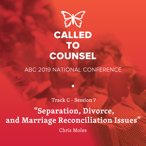 2019 ABC National Conference MP3: Domestic Abuse Session 7