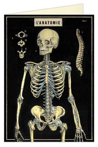 L'Anatomie Greeting Card