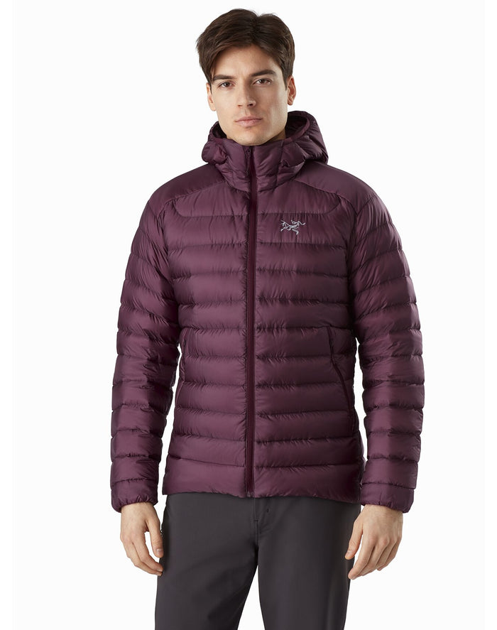 Arc'teryx Men's Cerium LT Hoody, Dynasty