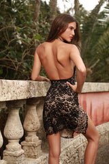 JACLINE LACE DRESS IN BLACK WITH GOLD
