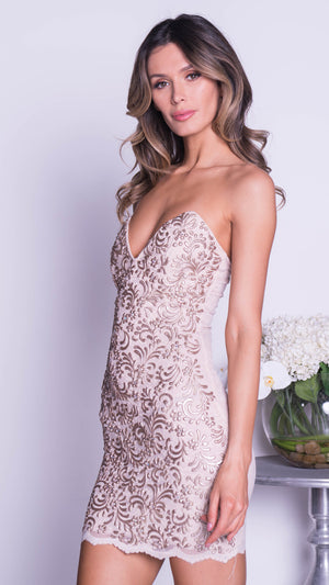 TORI  LACE DRESS IN BLUSH