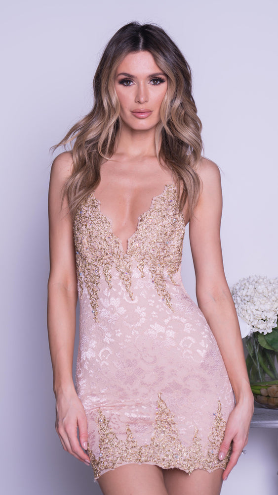 BROOKLYN LACE DRESS IN NUDE WITH GOLD