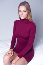 SEAMLESS LONG SLEEVES TURTLENECK DRESS IN WINE