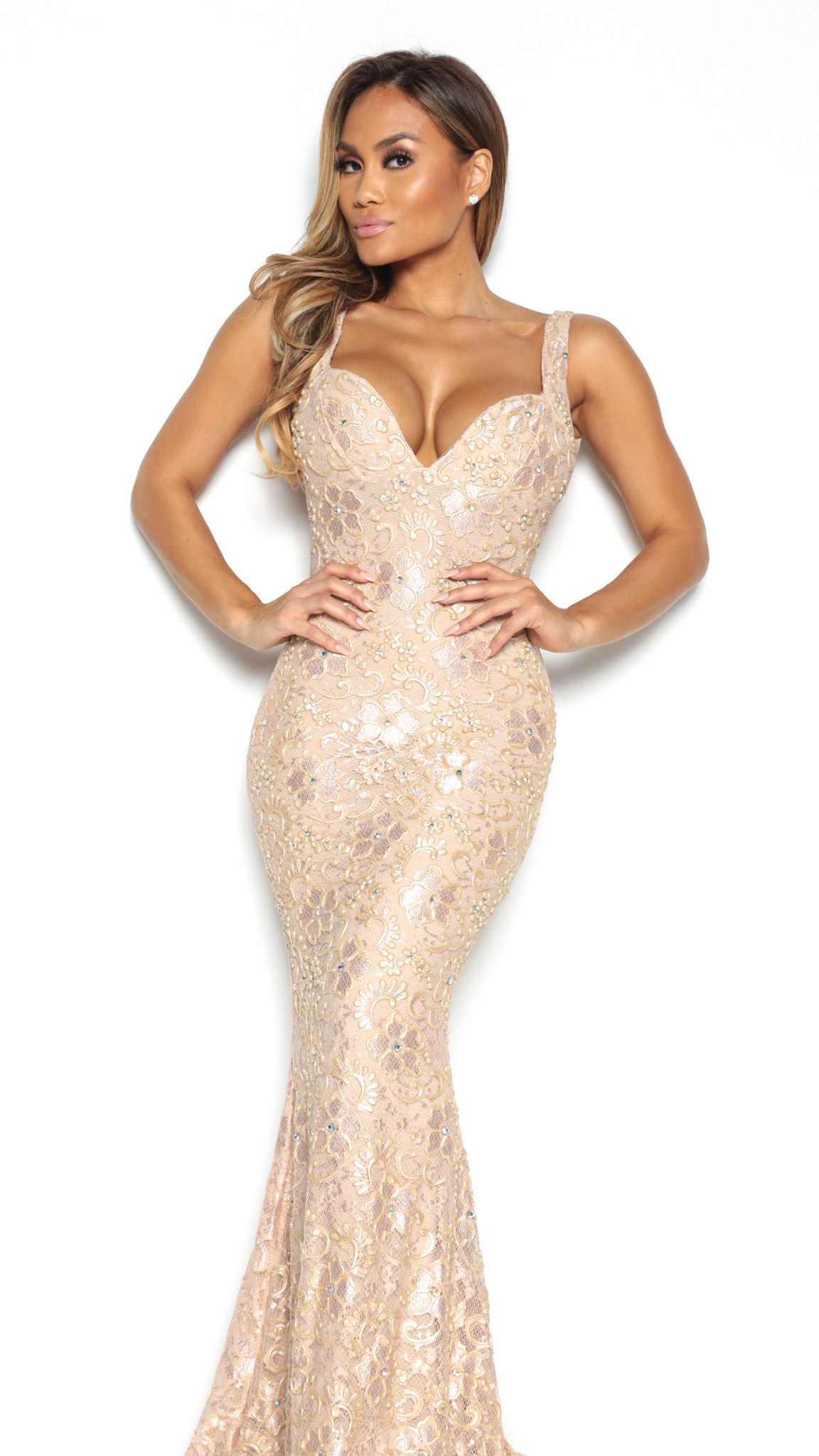 BRIE LACE GOWN IN NUDE