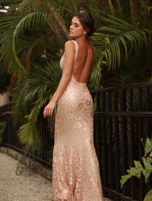 BRIE LACE GOWN IN BEIGE