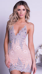 CELESTE LACE  DRESS IN NUDE WITH SILVER