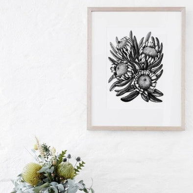 Limited Edition Protea Bunch Print by Paula Zetlein