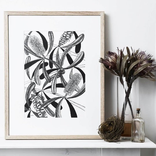 Limited Edition Coastal Banksia Print by Paula Zetlein