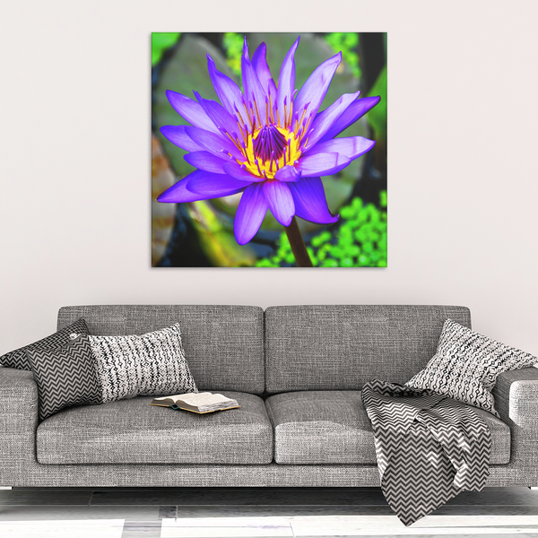 Purple & Yellow Lotus Flower Canvas Wall Art - Square - 4 Sizes - Mind Body Spirit