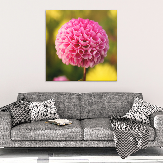 Pink Dahlia Heart Shaped Petals Canvas Wall Art - Square - 4 Sizes - Mind Body Spirit