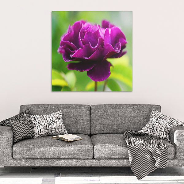 Purple Flower In Spring Garden Canvas Wall Art - Square - 4 Sizes - Mind Body Spirit