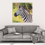 Zebra in The Wild Canvas Wall Art - Square- 4 Sizes - Mind Body Spirit
