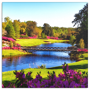 Floral Garden With Lake Canvas Wall Art - Square, 4 Sizes