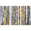 Birch Grove Fall Leaves Pine Background Triptych Awesome 3 Panel Custom Canvas Wall Art, 3 Sizes, Organic Natural Feature, Living Room, Family Room, Den, Office, Bedroom, - Mind Body Spirit