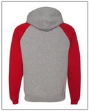 WSFA  Colorblock Raglan Pullover with Hood (Back View)