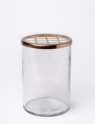 BIDKHOME MED. GLASS & BRASS FLOWER CYLINDER H7''- CLEAR & GOLD